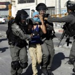 """العربية لحقوق الإنسان"""" تطالب مجلس الأمن بالتصدي للجرائم الإسرائيلية"""