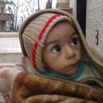 المنظمة العربية تدين استمرار حصار وتجويع بلدة مضايا
